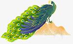 漂亮的手绘孔雀