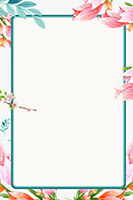 花朵植物边框线框