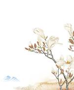 彩绘白玉兰