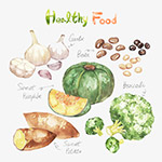 水彩蔬菜食物