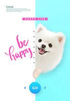 宠物狗海报