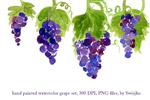 水彩紫葡萄图案