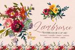 波尔多水彩花卉