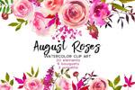 水彩玫瑰花卉