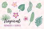 植物叶子图案背景