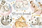 睡觉的动物插画