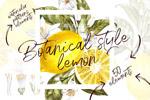 水彩手绘柠檬