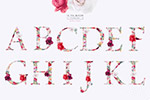 花卉英文字母