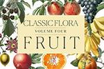 热带水果素材