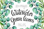 水彩绿色树枝叶