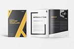 年度报告品牌手册