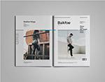 多行业杂志模板