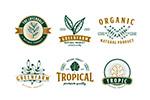 绿色产品品牌Logo