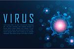 新型冠状病毒矢量