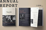 年度报告模板