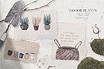 手绘室内植物水彩画