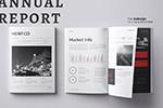 年度报告大数据宣传册