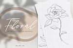 钢笔花卉植物插画