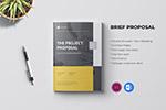 专业品牌手册