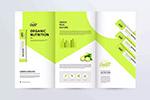 绿色有机产品折页