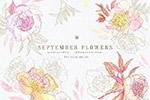 九月花花卉手绘水彩画