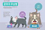 宠物治疗插画