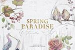 手绘水彩春季花卉鸟类