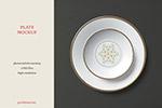 餐具品牌瓷盘样机