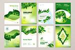 绿色宣传册封面模板