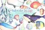卡通水彩海洋生物