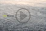 水纹效果视频