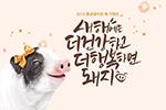 猪年促销海报4