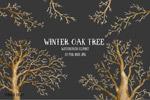 水彩冬天橡树图形
