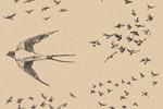 手绘鸟群图案