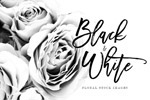 黑白花卉图片