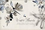 冬季水彩花卉