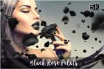 黑玫瑰叠加素材