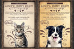 宠物收养宣传单