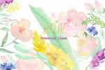 柔和的水彩花卉