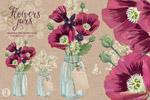 水彩罂粟花元素