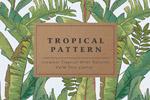 热带植物棕榈树