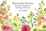水彩花园花卉插画