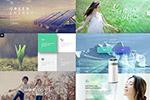 清洁能源专题网页