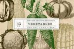 �凸旁�始蔬菜植物