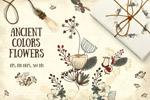 手绘藤条花纹花卉