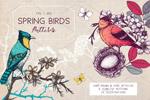 手绘春季鸟类图案