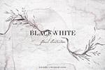 黑与白水彩花卉