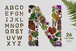 植物英文字母
