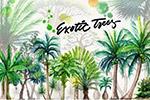 水彩热带丛林植物
