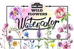 水彩野花图案